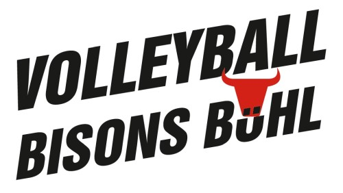 logo volleyball bisons